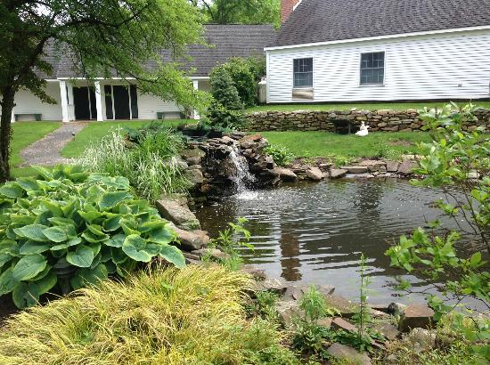 Bloomsburg, PA: Pond on ground of the Inn