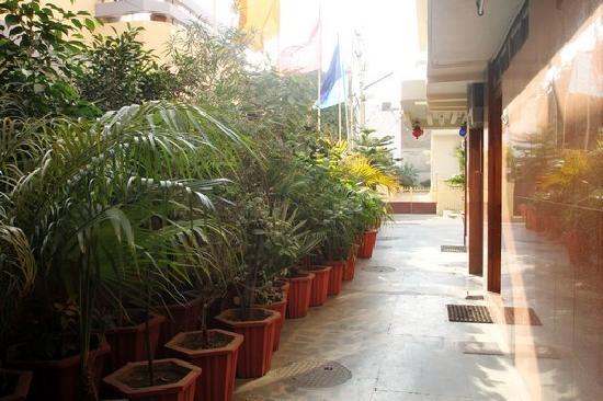 Hotel Kalyan: Gallary