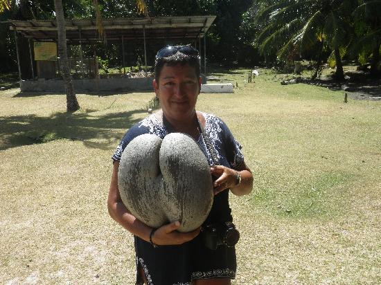 Villas de Mer: coco fesse