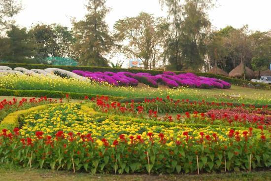Provincie Udon Thani, Thailand: บรรยากาศ  ณ ภูฝอยลม