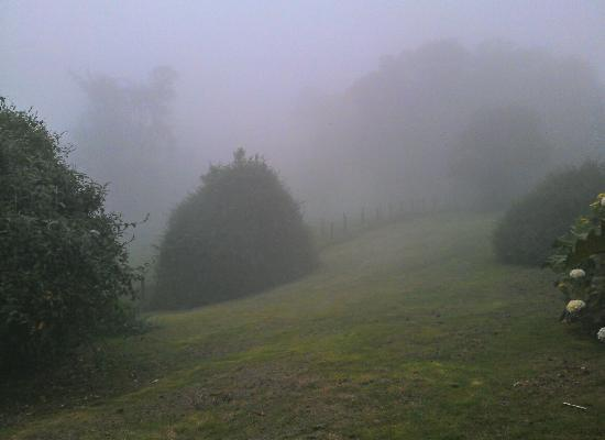 Volcan Turrialba Lodge: mist is normal during early evening