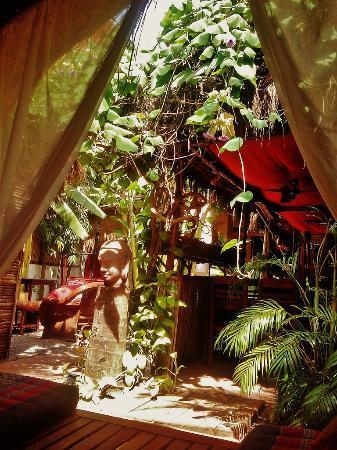 Babel guesthouse garden.