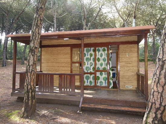 Lisboa Camping & Bungalows : tranquilidad absoluta en un bonito bosque
