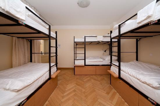 Hostel Mango: Dormitory 3