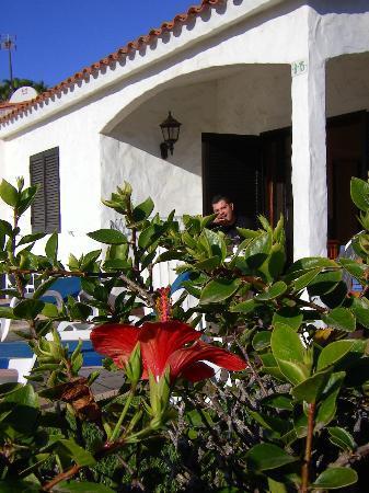 Santa Barbara Apartments
