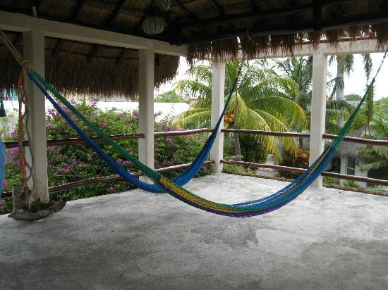 Baldwin's Guest House Cozumel: This is how you end the day, in a hammock with cool breezes