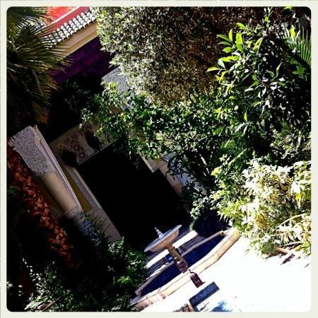 Riad L'Aziza : le jardin