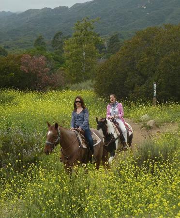 Ojai Valley Inn: Ballade au Ranch d'Oso