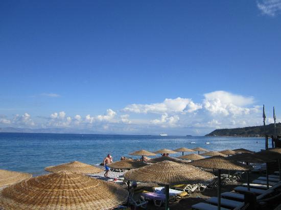 Amathus Elite Suites: hotel beach