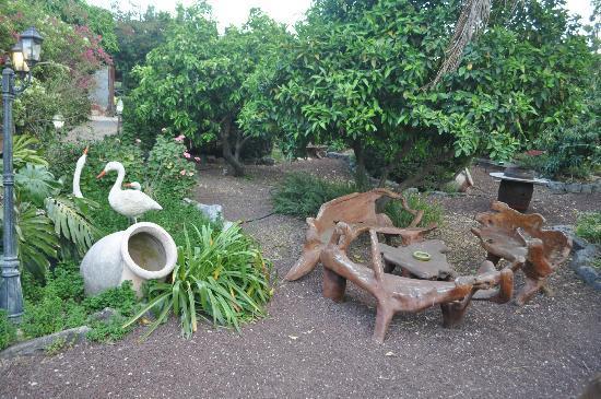 أربل جيست هاوس شافت فاميلي: Garden