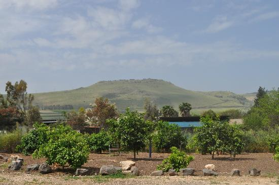 Arbel Guest House Shavit Family: Back ground view