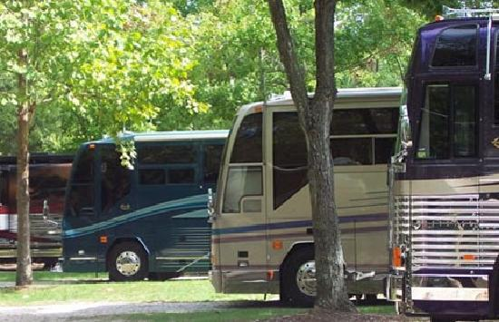 Williamsburg KOA Campground: Variety of Site Options