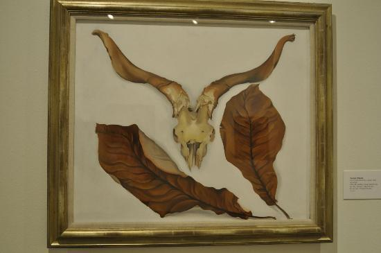 Roswell Museum & Art Center: Georgia O'Keeffe