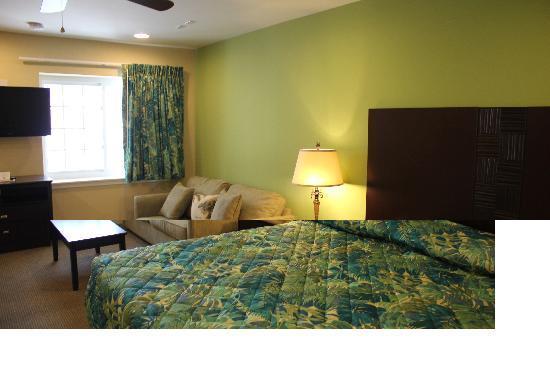 Buckingham Hotel: renovated room