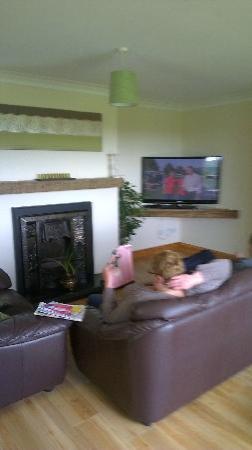 Arley House B & B: Lounge