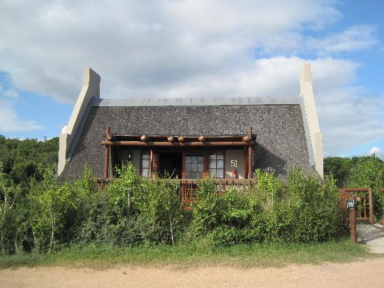 Addo Rest Camp: Lodge