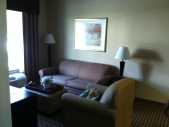 Homewood Suites by Hilton Bel Air: Sofa Bed in LR