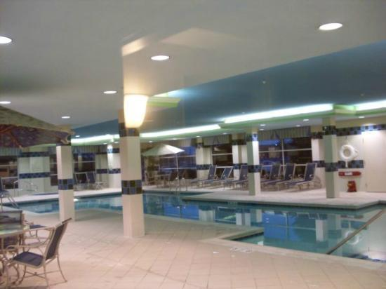 Hilton Garden Inn Buffalo Airport: Pool