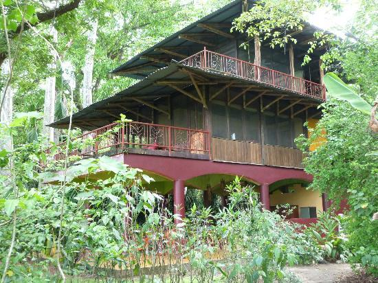 Iguana Lodge: Beautiful Villa Villa Kula - a treehouse in the sky