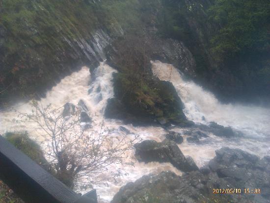 Conwy Falls: Conway Falls