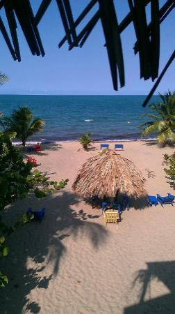 All Seasons Guest House : View from the Room