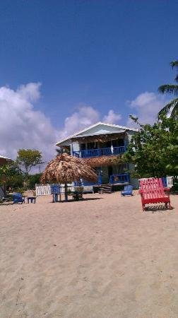 All Seasons Guest House : View from the Ocean