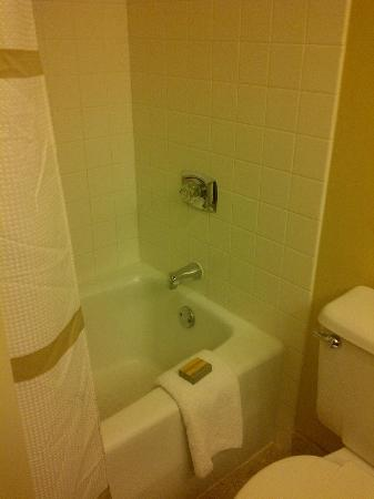 Marriott Kansas City Overland Park: The bathroom is small but clean