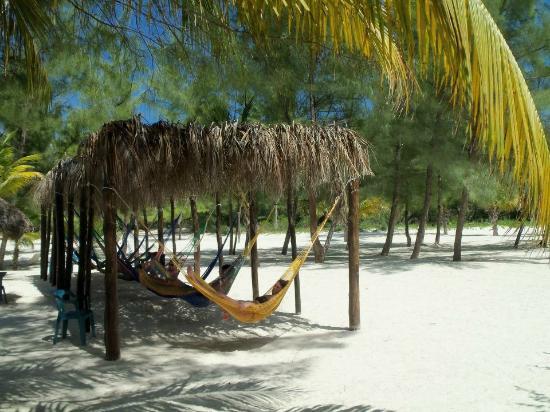 Isla Pasión: Passion Island 5/8/2012