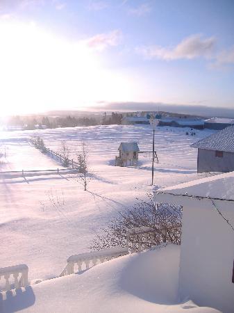 Domaine du Perchoir : Winter view