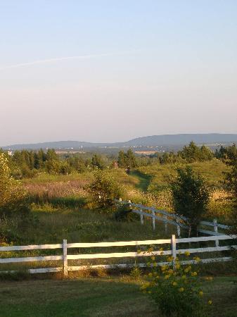 Domaine du Perchoir : Fields