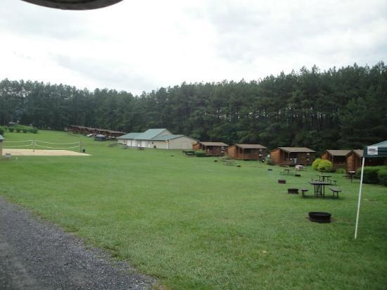 Yogi Bear's Jellystone Park Camp-Resort Luray: View of comfort cabins and volleyball