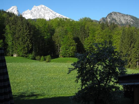 Alm- & Wellnesshotel Alpenhof: View from my balcony & bed