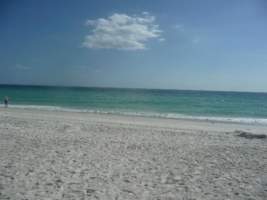 An Island Getaway at Palm Tree Villas: ...weißer weicher Sand...