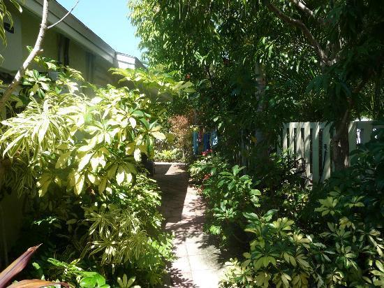 An Island Getaway at Palm Tree Villas: Wunderschöner Garten der Anlage