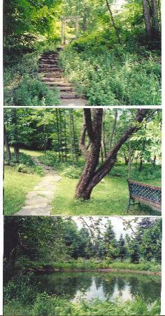 Northfield Inn: Path to the pond