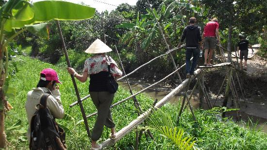 Image result for monkey bridge