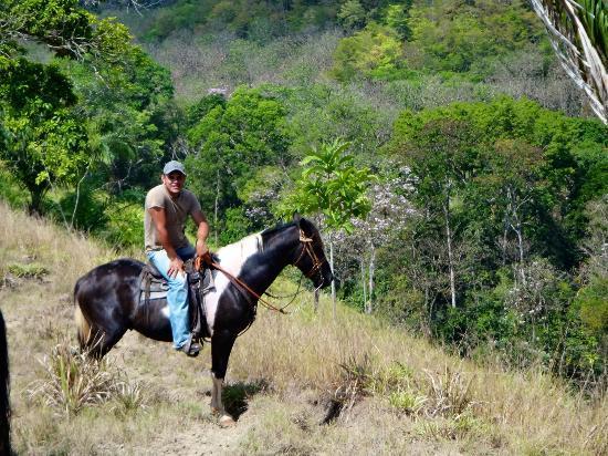 Barking Horse Farm: Ranch Country