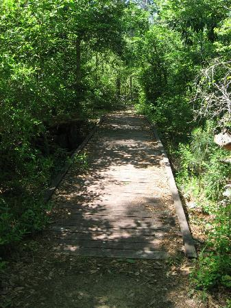 Big Thicket National Preserve: Kirby Nature Trail