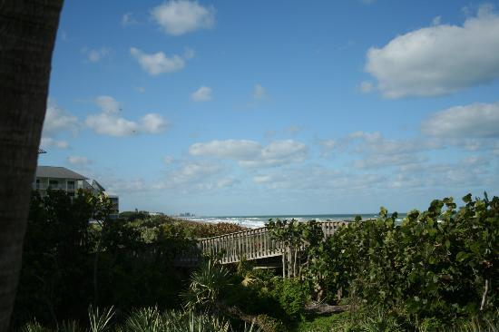 Plantation Beach Club at Indian River: View from unit