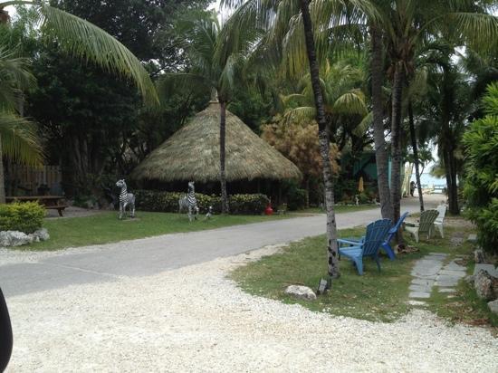 Sunset Cove Beach Resort: property is very nice