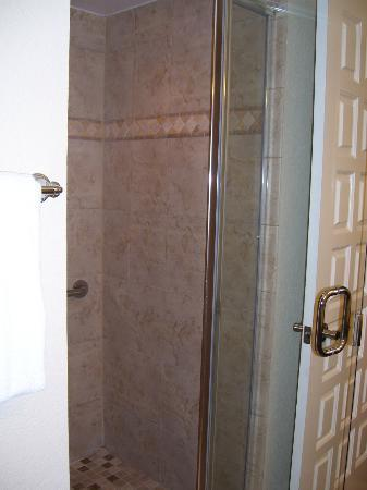 Plantation Beach Club at Indian River: 2 bedroom master shower stall