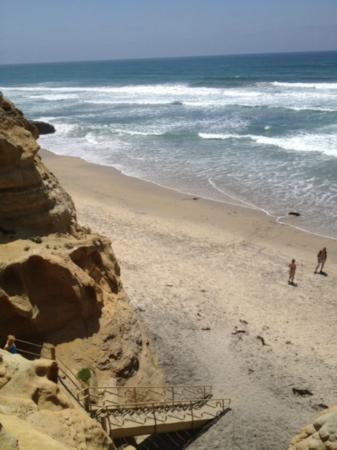 Torrey Pines State Natural Reserve: Stairs (sort of) down to beach
