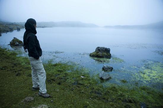 Intense Peru: Laguna de Queuñacocha