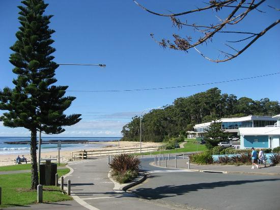 Mollymook Shores : Mollymook beach