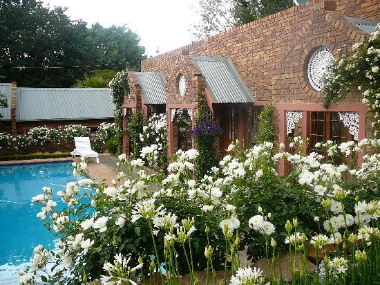 Van Dykshuis Guest Lodge: Rooms facing the swimming pool, with the feeling that you're in your own private world.