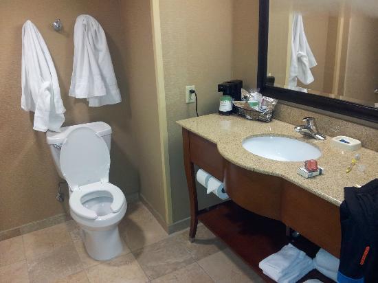 Hampton Inn Harriman Woodbury: Bathroom with tub, shower and countertop.