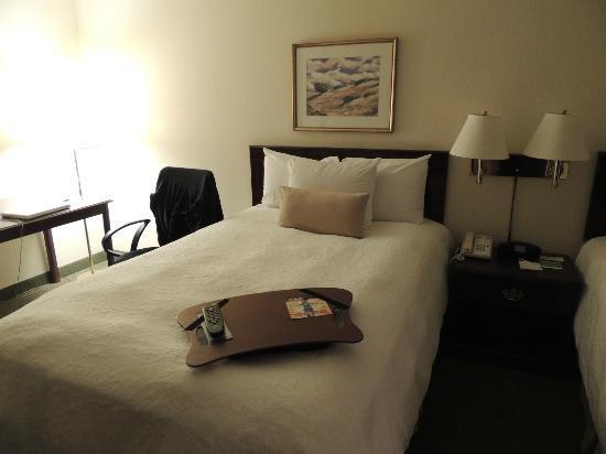 Hampton Inn Denver - International Airport: had 2 queen beds