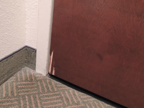 Hampton Inn Denver - International Airport: entry door