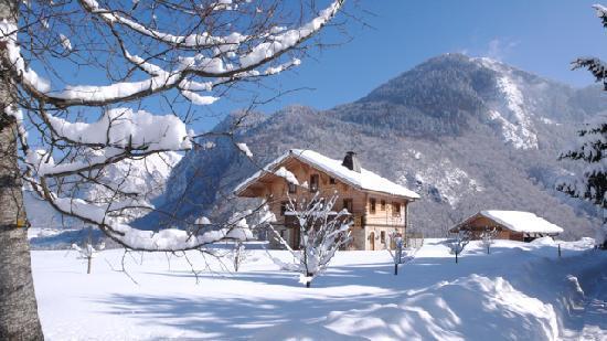 Chalet Châtelet : Chalet in Ski Season