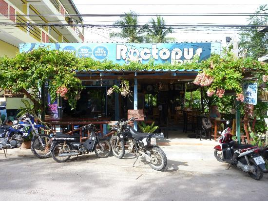 La cabane que partagent le Mint Kitchen (à droite) et le Roctopus Dive (à gauche)
